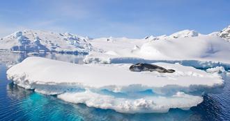 Voilà pourquoi il vous faudra visiter l'Antarctique un jour…