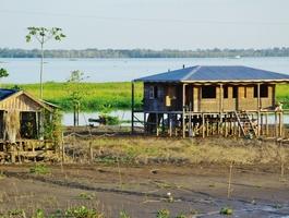 Maison sur pilotis - Amazonie