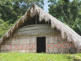 Maison typique à Manaus