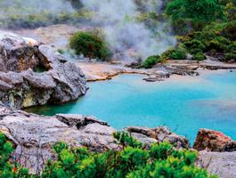 Te Puia thermal park, New Zealand