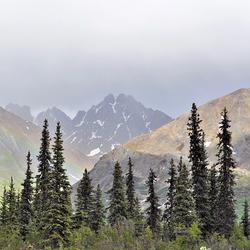 Montagnes d'Alaska