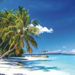 Plage - Tortola
