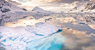 Croisière Arctique ou Antarctique : un expert polaire vous aide à choisir