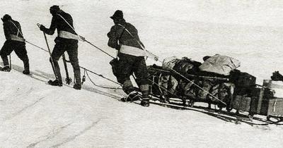 Expéditions polaires : grandes figures et aventures du siècle dernier