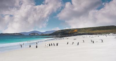 10 raisons de faire une croisière en Patagonie