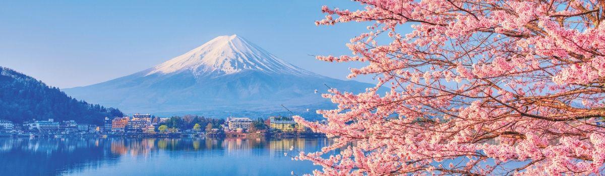 Volcan Mont Fuji (Fuji Yama) : icône volcanique du Japon