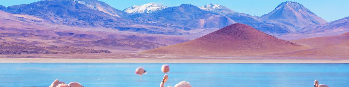 Croisières de rêve en Patagonie: focus sur l'Amérique latine en voyage