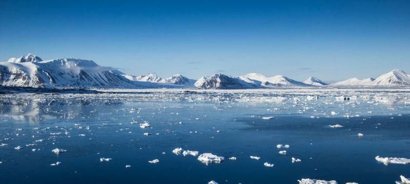 Quelles sont les compagnies de croisière qui opèrent en Alaska ?