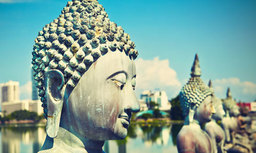 Les 5 conseils pour bien choisir sa croisière en Inde