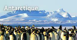 Destination #1 : Antarctique, le « continent blanc »