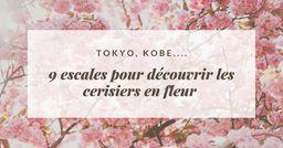 Tokyo, Kobe,...9 escales pour découvrir les cerisiers en fleur