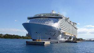 Le plus grand paquebot au monde fait escale au port de Marseille