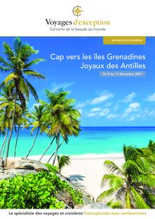 Cap vers les îles Grenadines Joyaux des Antilles