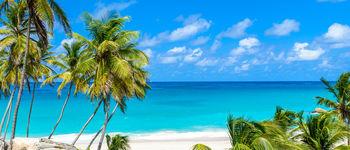 Voyages d'exception vous propose d'embarquer à bord du MS Panorama, un voilier tout confort et intimiste, à la découverte des trésors de la mer des Caraïbes. Cap sur les Îles Grenadines
