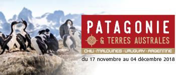En 2018, partez pour une incroyable croisière au bout du monde. Patagonie, Ushuaïa, Cap Horn… tant de noms qui font rêver !