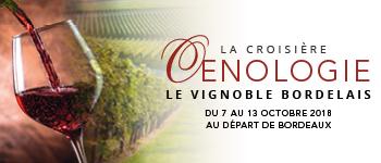 Découvrez les vignobles les plus célèbres du Bordelais avec Bernard Burtschy lors d'une croisière sur la Garonne et la Dordogne