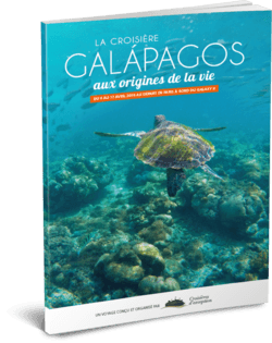 Galápagos - Aux origines de la vie