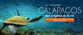 Découvrez la faune extraordinaire des îles Galápagos, au large de l'Equateur, une réserve naturelle unique au monde !