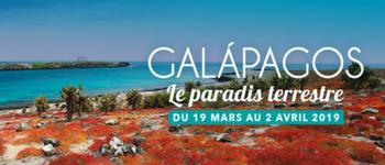 Découvrez les espèces animales les plus exceptionnelles et les plus fascinantes de la planète... Cap sur les îles Galápagos !