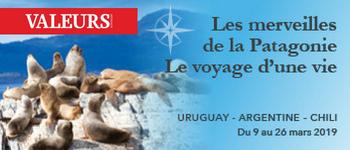L'Amérique du Sud et la Patagonie vous réservent bien des surprises au cours de ce voyage de 2 semaines. Découvrez-les dès maintenant…