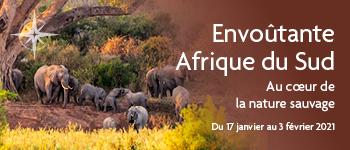 Envie de croisière en Afrique du Sud ? Croisières d'exception vous propose de découvrir une destination unique et sublime en compagnie d'une équipe francophone