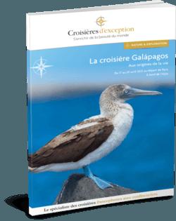Croisière Galápagos | Aux origines de la vie