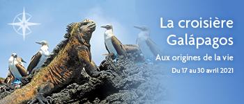 Partez en croisière dans l'archipel des Galápagos, avec un accompagnement francophone. Croisières d'exception est heureux de vous proposer ce fabuleux séjour...