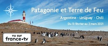 Vous avez toujours rêvé d'une croisière en Patagonie ? Embarquez en février 2021 avec Croisières d'exception et partez à la découverte de cette terre mythique