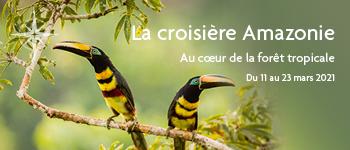 Envie d'une croisière en Amazonie ? Embarquez avec Croisières d'exception pour une aventure inoubliable, en compagnie d'une équipe francophone  au départ de Gen