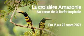 Envie d'une croisière en Amazonie ? Embarquez avec Voyages d'exception pour une aventure inoubliable, en compagnie d'une équipe francophone