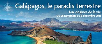Embarquez pour la croisière Galápagos, aux origines de la vie à bord de l'Eco Galaxy, un yacht luxueux et au départ de Genève