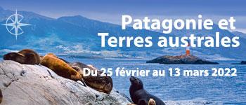 Argentine, Uruguay, Chili : découvrez la Patagonie et les terres australes en croisière ! Un voyage d'exception à la découverte d'une nature à couper le souffle