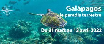 Embarquez pour la croisière Galápagos au départ de Genève,  bénéficierez des conférences de Alain Desbrosse, géologue et naturaliste