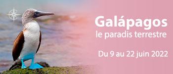 En juin 2022, partez en croisière au départ de Genève pour un voyage extraordinaire sur les fameuses îles volcaniques des Galápagos.
