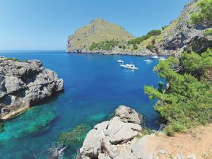 Palma de Majorque (Ile des Baléares)