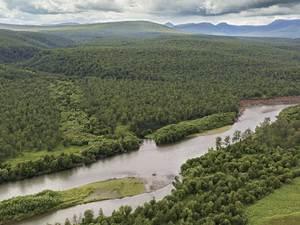 rivière Zhupanova