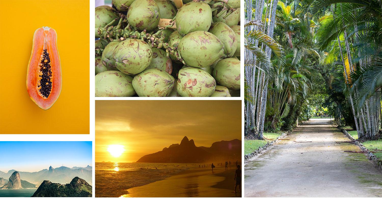Rio de Janeiro en 5 images