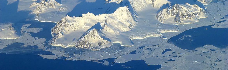 Antarctique : une faune bien plus riche qu'on ne l'imagine