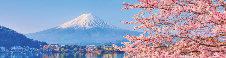 Volcan Mont Fuji Yama