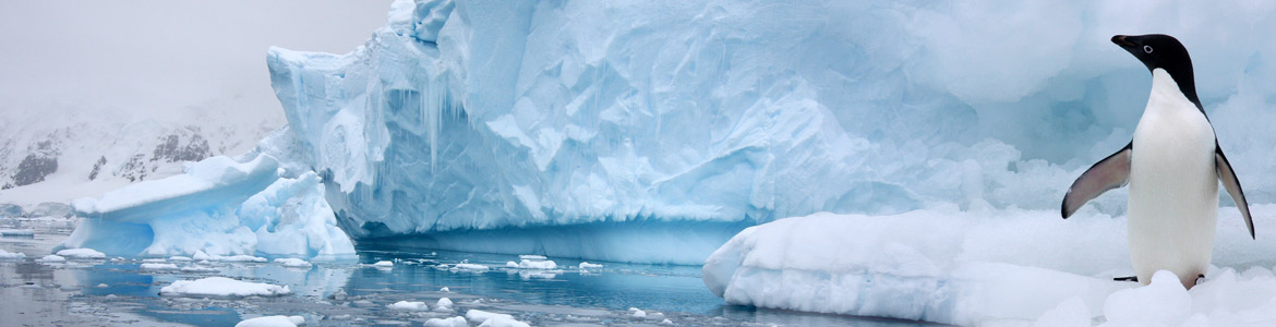 Comment se rendre en Antarctique ?