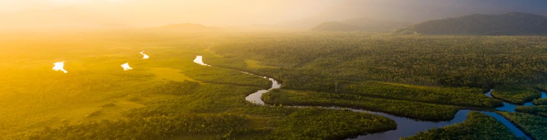 Le fleuve Amazone